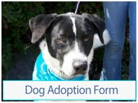 Dog Adoption Form